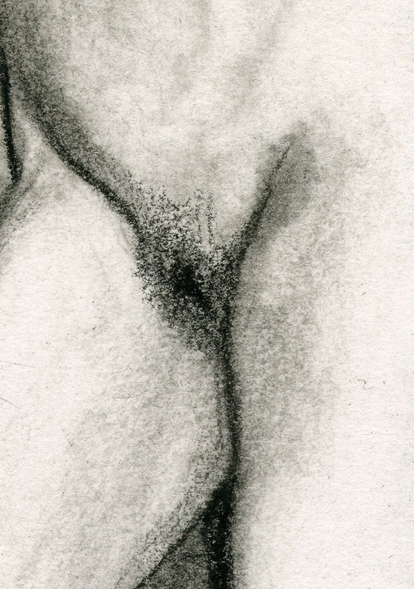 confinement, dessin, fusain, board, grey, painting, body, soluto dessin